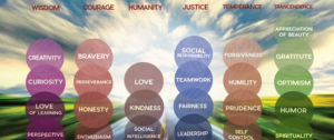 Strengths Based Approach 103 – Strengths Assessment Tools